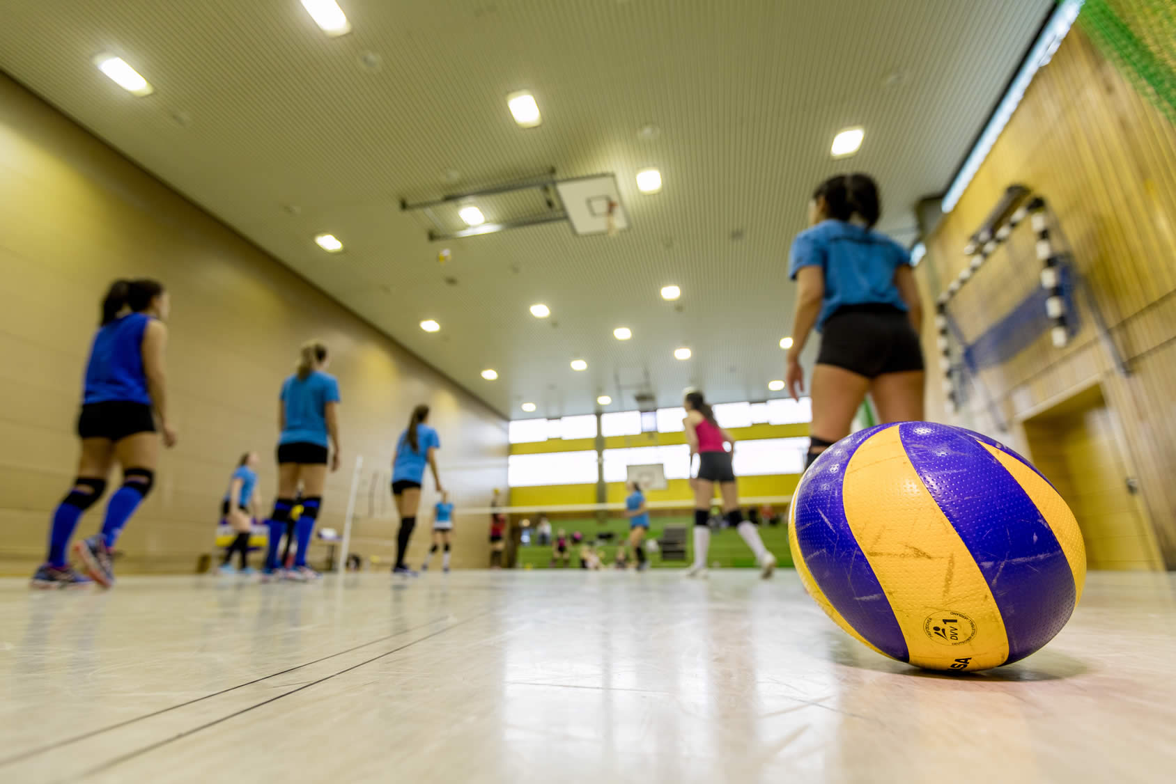 Que es el voleibol y sus reglas basicas